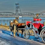 Valentine's Day FREE Horse-Drawn Carriage Rides