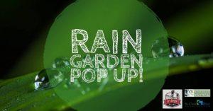 Rain Garden Pop-up