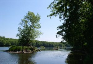 Friends of Wild River State Park Free Pancake Breakfast and annual meeting