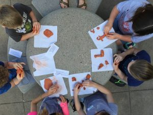 Little Doodlers Cute & Cuddly Art Camp: Ages 4-6