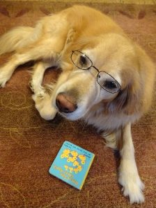 PAWS to Read with Bella