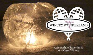 Winery Wonderland @ 7 Vines Vineyard
