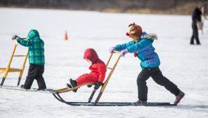 WinterFest at Lake Elmo Park Reserve