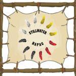 Stillwater NAPAC End of Year Celebration!