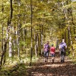 Fall Foliage Hike- Sandrock Cliffs Trail