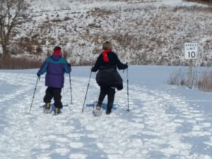 Learn to Snowshoe