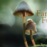 Film @ Franconia: Fantastic Fungi and Fly Amanita