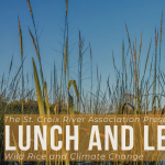 Lunch and Learn: Wild Rice and Climate Change