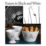 Nature in Black and White: Exhibition